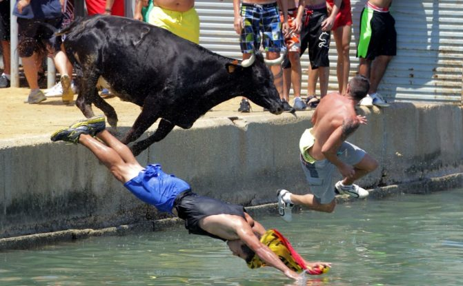 "TOPSHOTSPeople jump with a bull into the sea during the traditional running of bulls ""Bous a la mar"" (Bull in the sea) at Denia's harbour, near Alicante on July 8, 2013.       AFP PHOTO/ JOSE JORDAN"