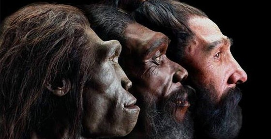 предки2